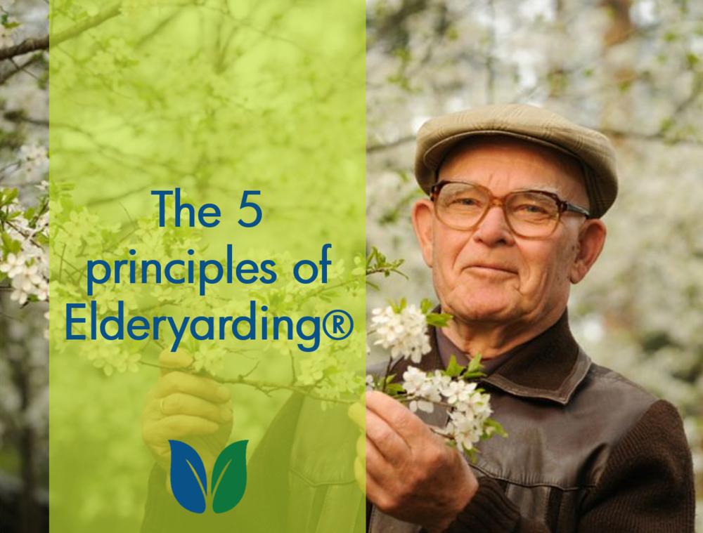 Older gentleman with blooming apple tree illustrates elderyarding®