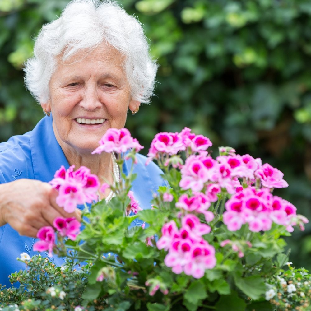 senior-woman-with-pink-flowers