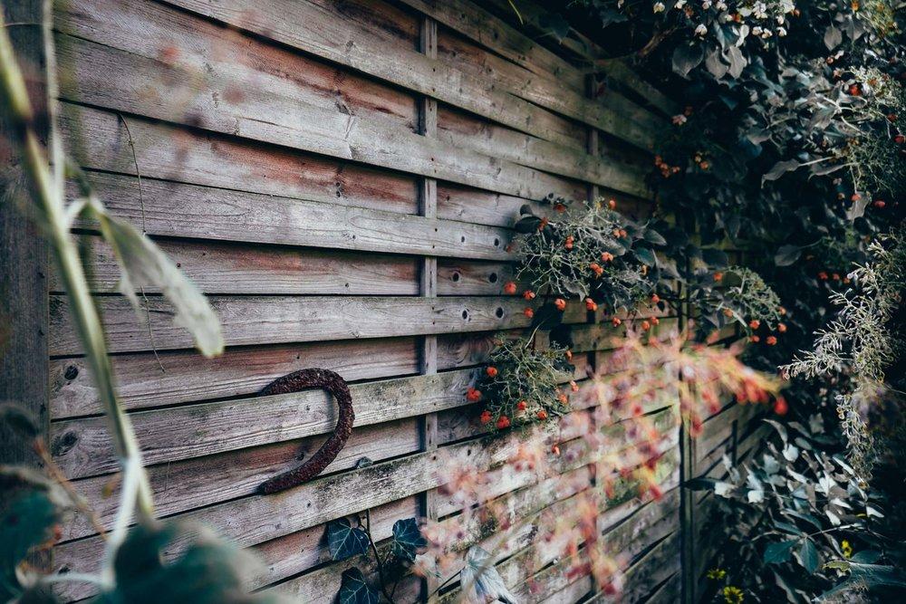 Horizontal Lines In The Garden