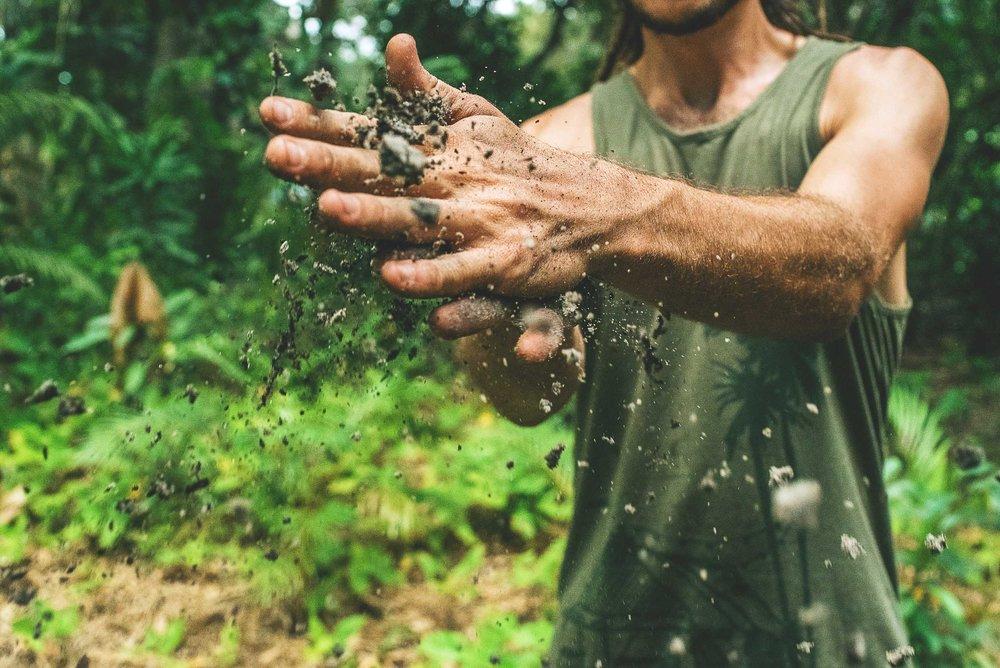 Bacterium That Gardeners Love: Mycobacterium