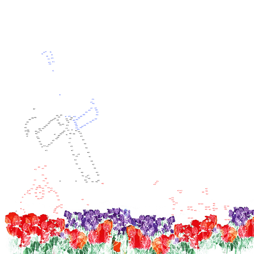 NL-molen-tulpenveld-versie3-web.jpg