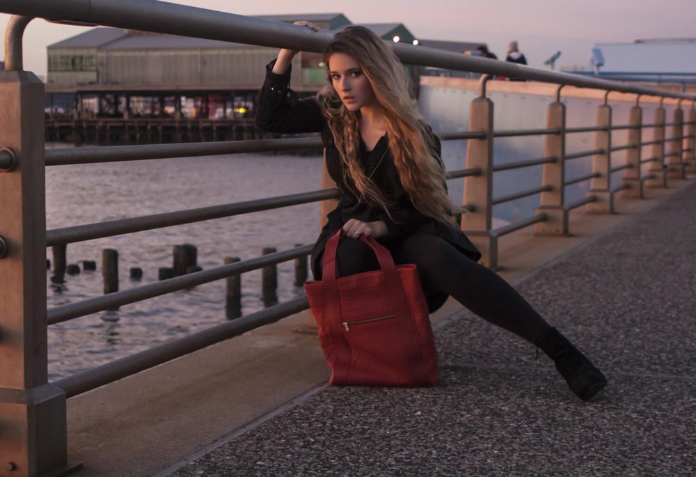 Another purse shot.jpg