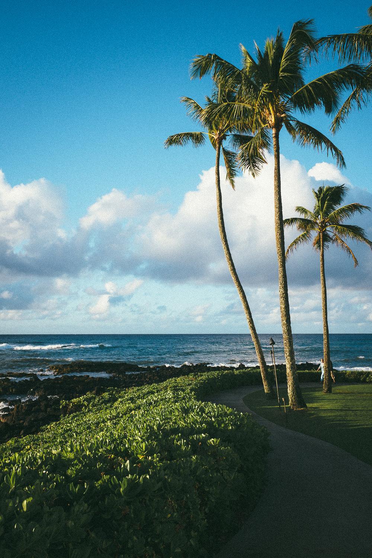 Hawaii-Blog-005.jpg