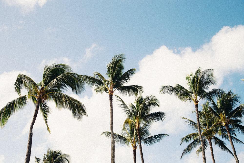 Hawaii-Blog-012.jpg