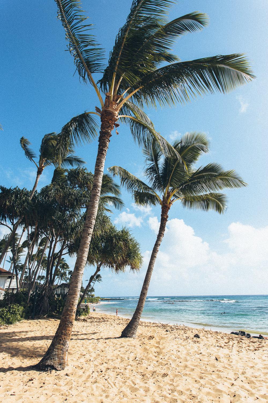 Hawaii-Blog-014.jpg