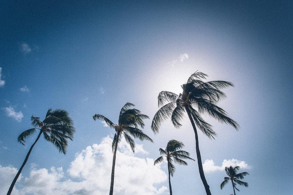 Hawaii-Blog-015.jpg