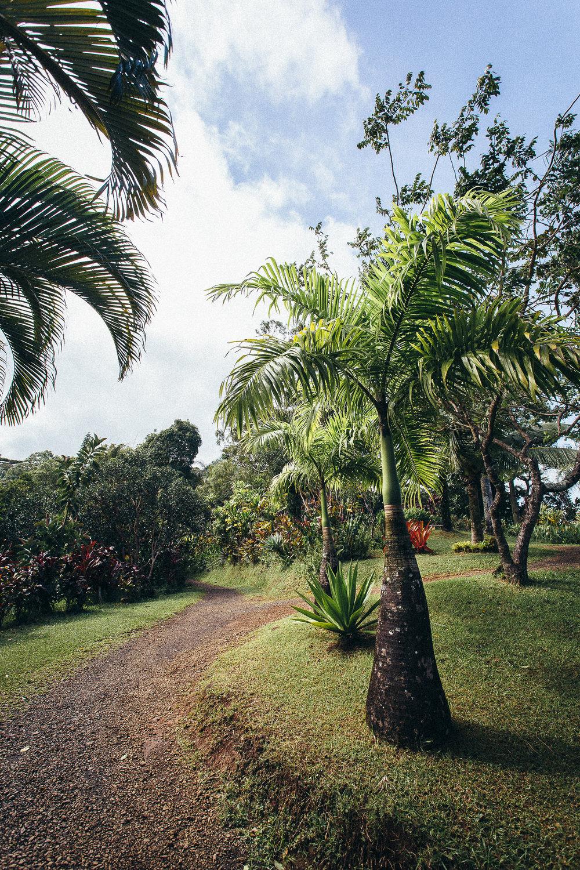 Hawaii-Blog-060.jpg