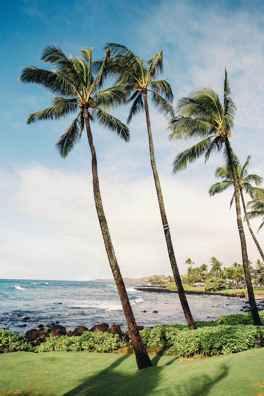Hawaii-Blog-068.jpg