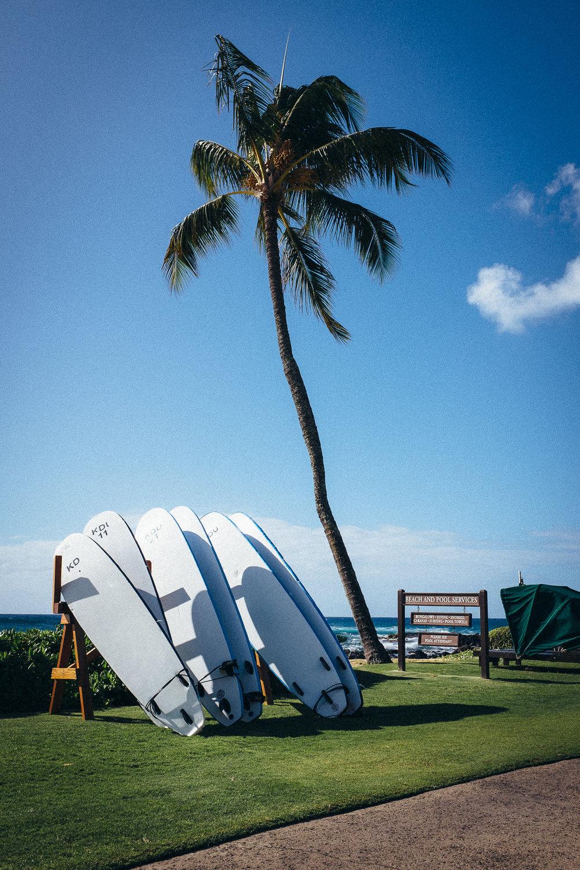 Hawaii-Blog-069.jpg