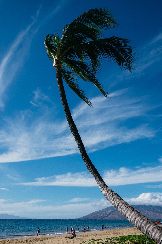 Hawaii-Blog-092.jpg
