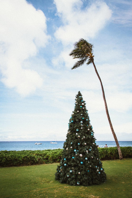 Hawaii-Blog-121.jpg