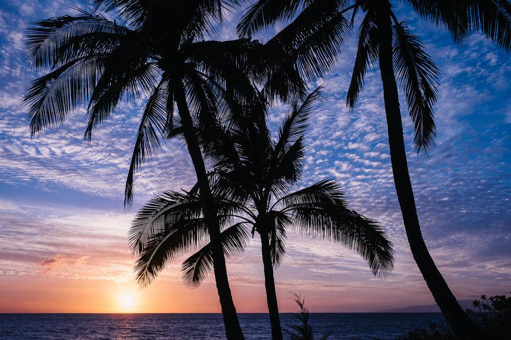 Hawaii-Blog-123.jpg