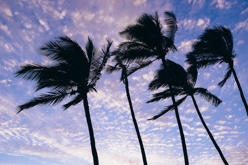 Hawaii-Blog-125.jpg