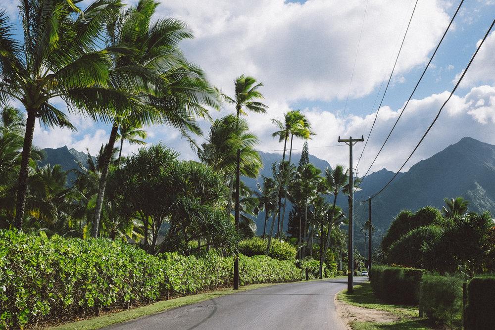 Hawaii-Blog-173.jpg