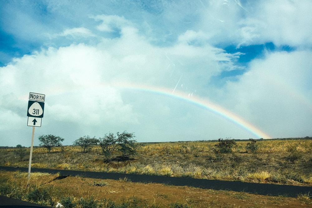 Hawaii-Blog-184.jpg