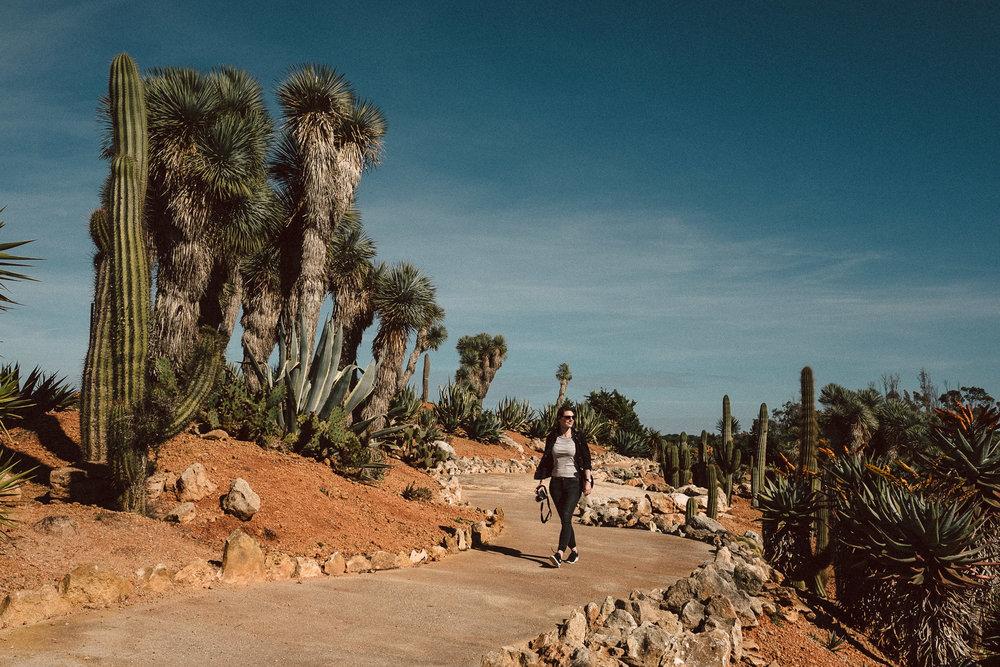 Fototagebuch_Mallorca_180327_066.jpg