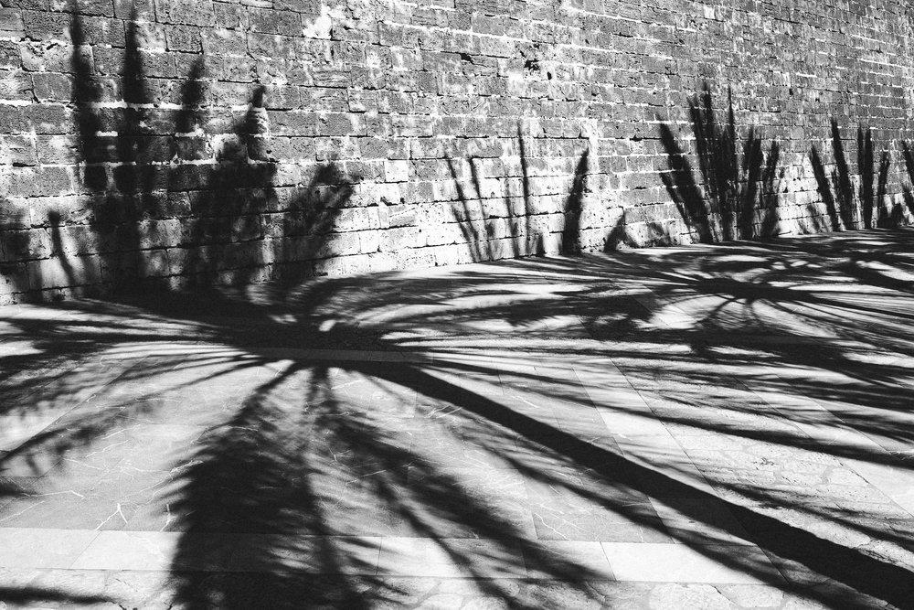 Fototagebuch_Mallorca_180328_085.jpg