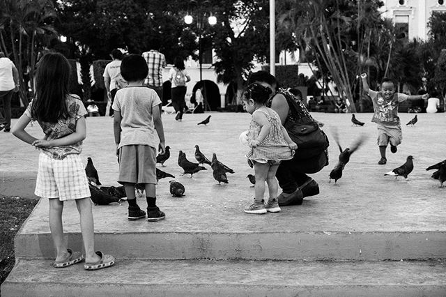 Joy. #streetlife #streetphotography #streetstyle #mexico #merida #streetphoto_bw #bnw