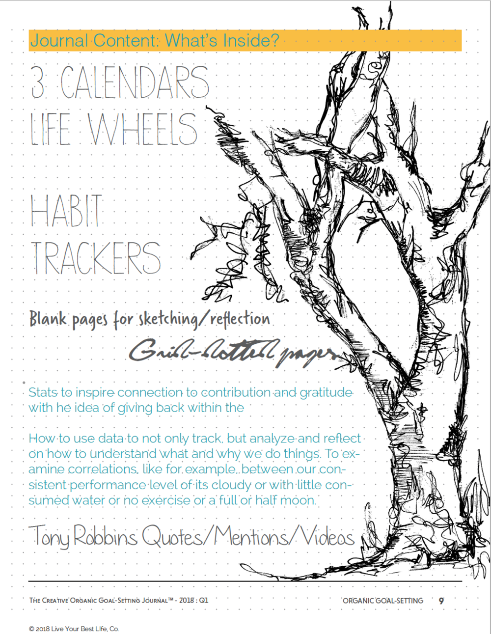 creative organic goal setting journal tony robbins new years resolutions.png