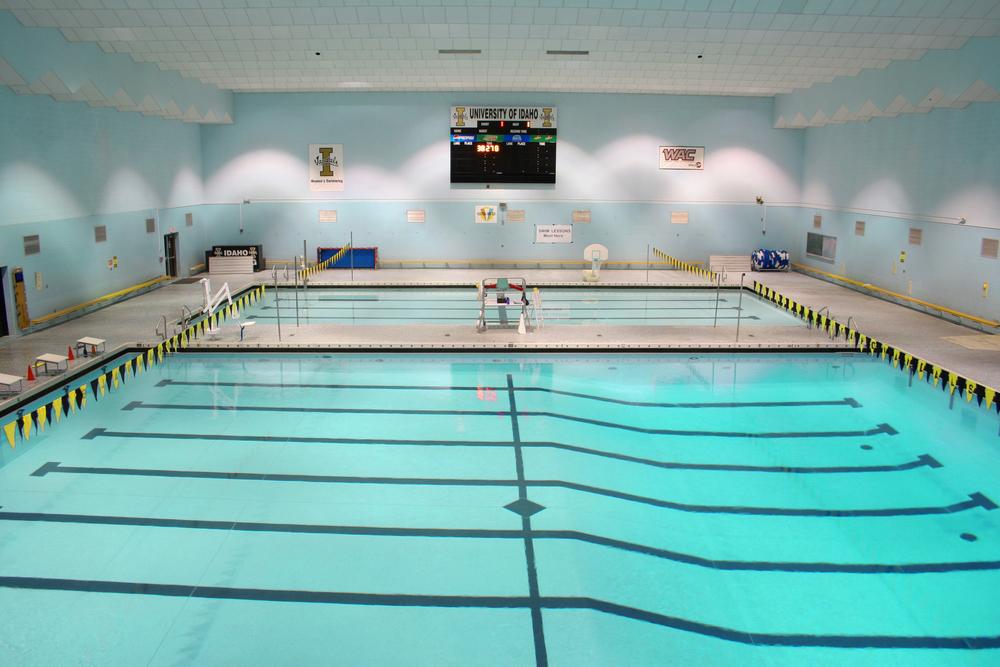 swimming pool 4 copy.jpg