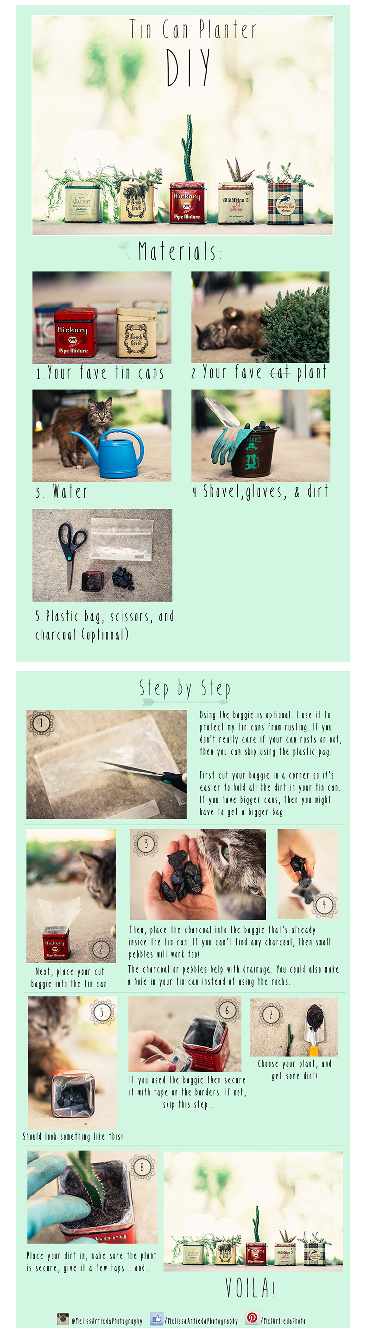 DIY Vintage Tin Can PlanterTutorial
