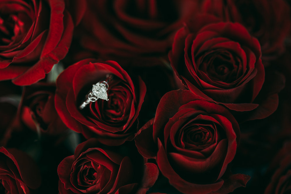 Silver Engagement ring sitting on top of a bouquet of red roses.