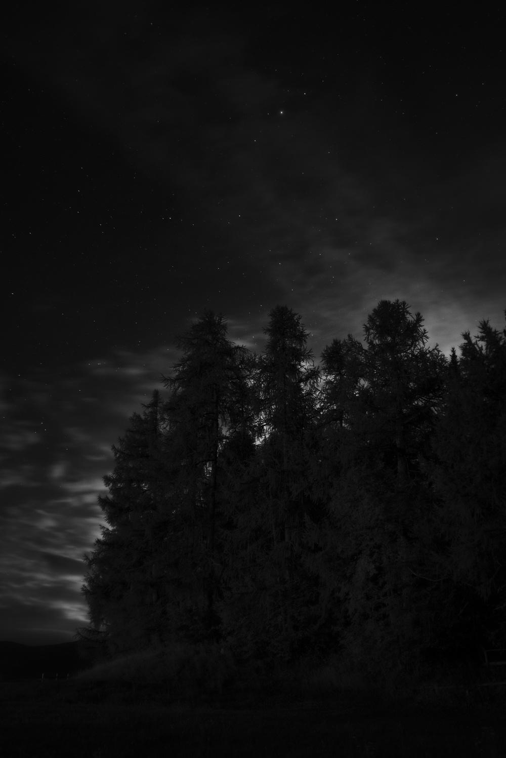 DSC00118-1_Snapseed.jpg
