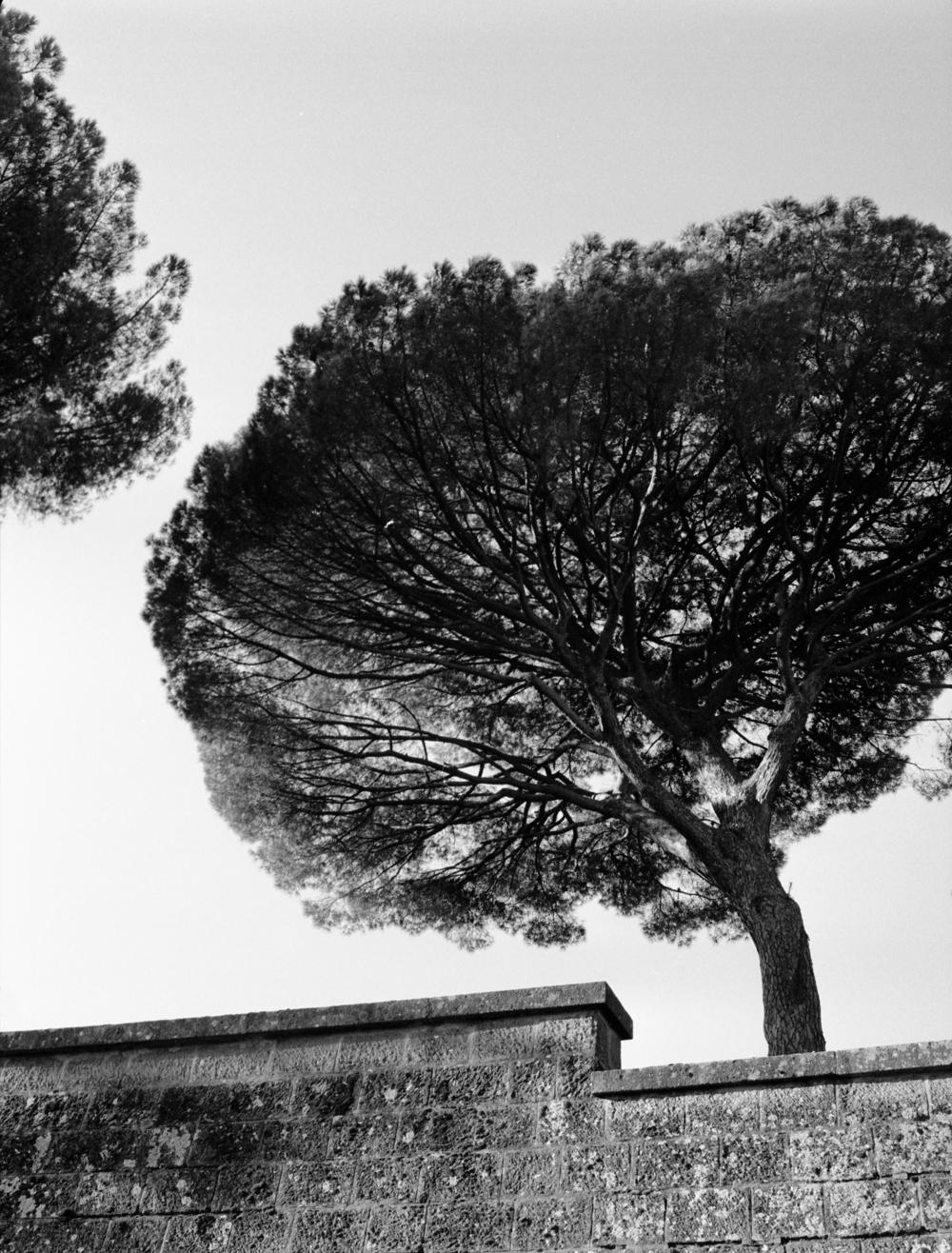 Philippe_Vandenbroeck_Rome_011.jpg