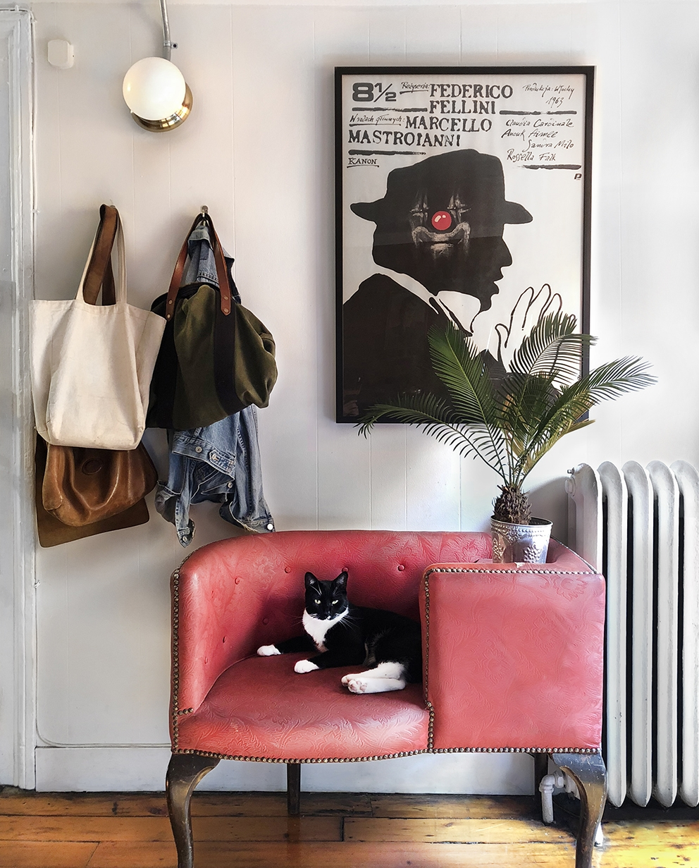 "Vintage ""Phone Banquette"" and vintage film poster. Found tuxedo cat."