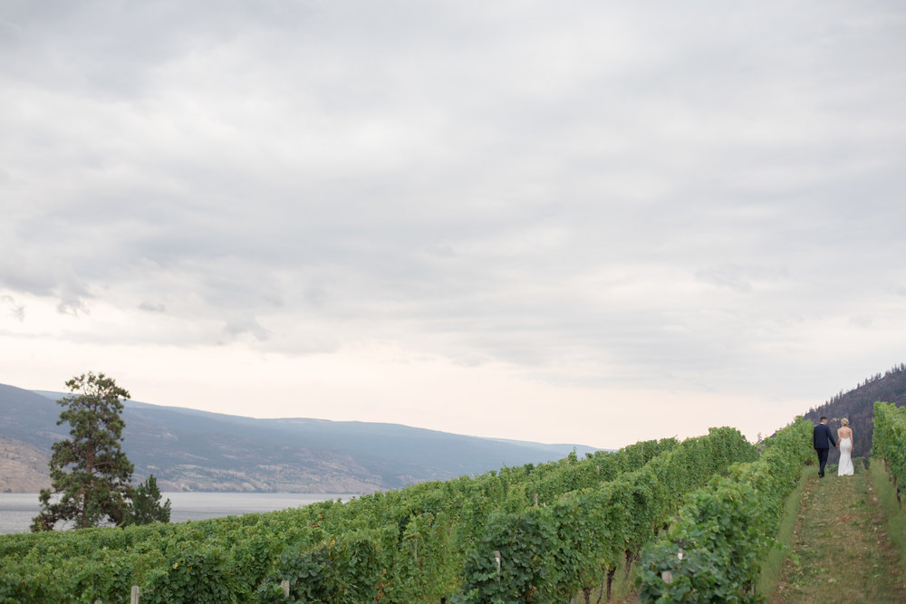 winery wedding okanagan.jpg