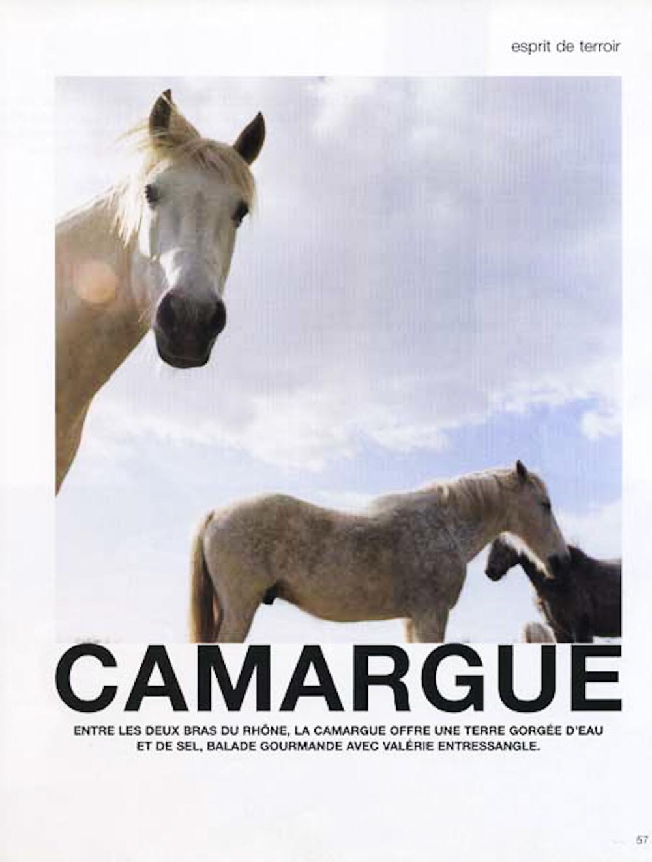 Camargue, France