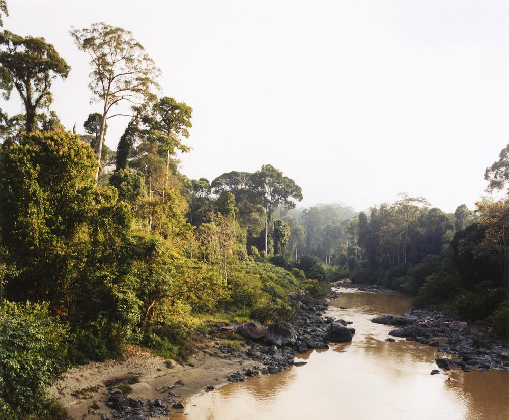 Danum River, Borneo