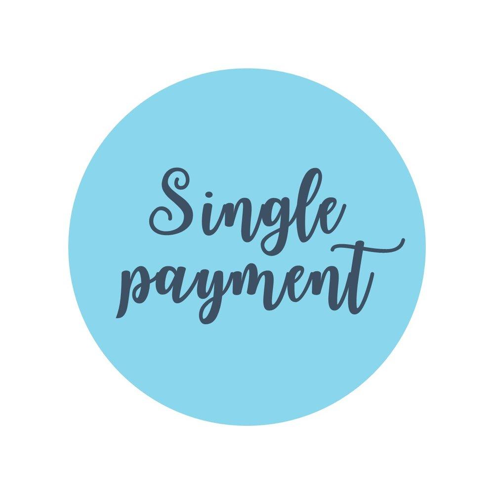 Single payment.jpg