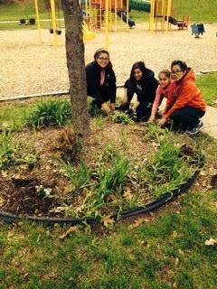 Planting2_May 2014.JPG