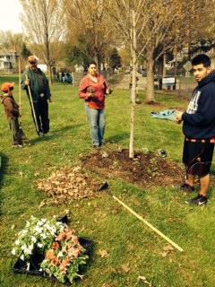 Planting4_May 2014.JPG