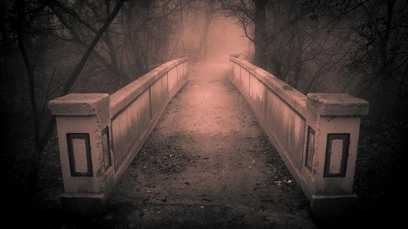 Bridge at Dellwood Park