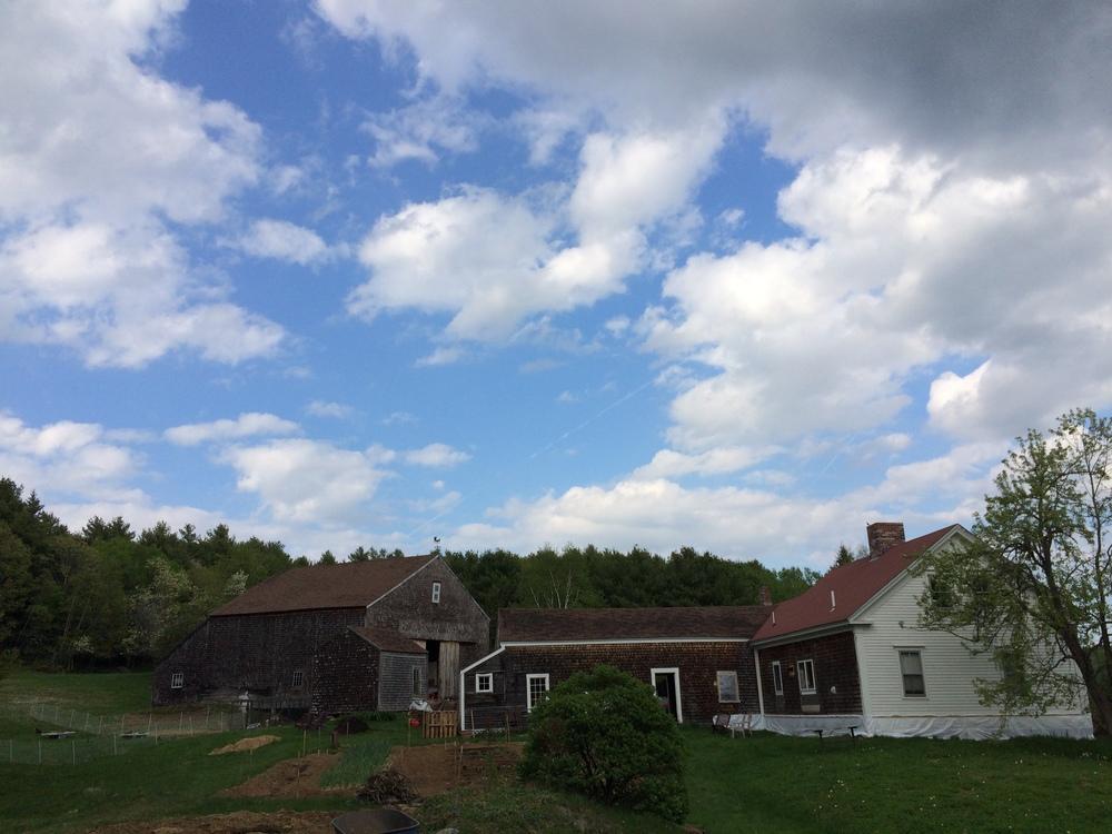 Ridge Pond Farm homepage.jpg