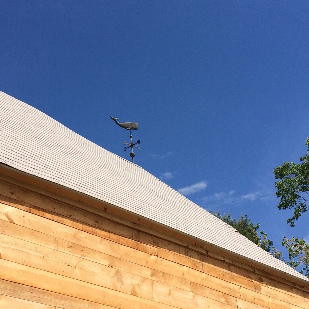 The whale weathervane on my parents' barn is my favorite of all time.