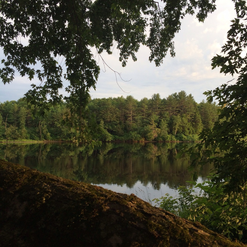 For the 4th, we spent time at my sister's in-laws on the Kennebec River, a lovely spot right on the banks.