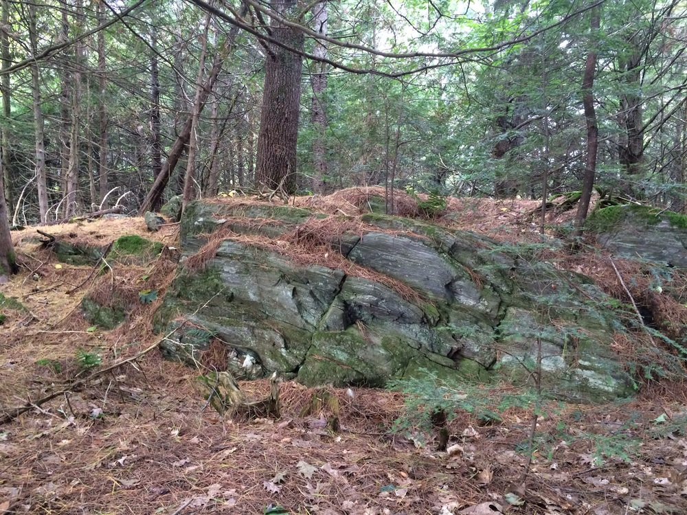 Mike has been clearing trails in our woods for hikes and access down to our shoreline on Branch Pond. Our land is full of ledge rock outcroppings like this moss-covered beauty.