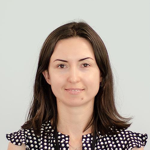 Julia Voronenko   Support Analyst