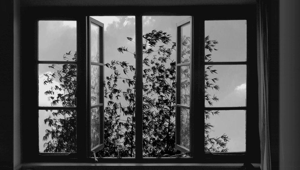 24Frames_004_Kiarostami.jpg