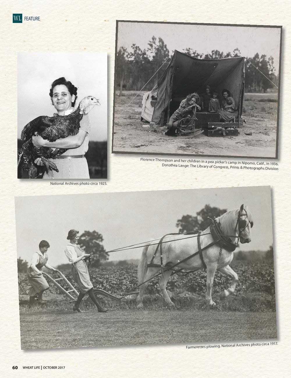 WL Women in ag pages-page-001.jpg