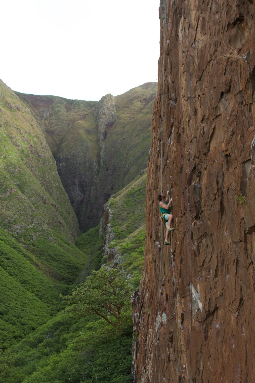 McLean on the stunning Maiden Voyage wall, one of four walls being developed in this valley near Lahaina.