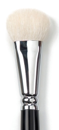 4038_CoverFX_160 Brush.jpg