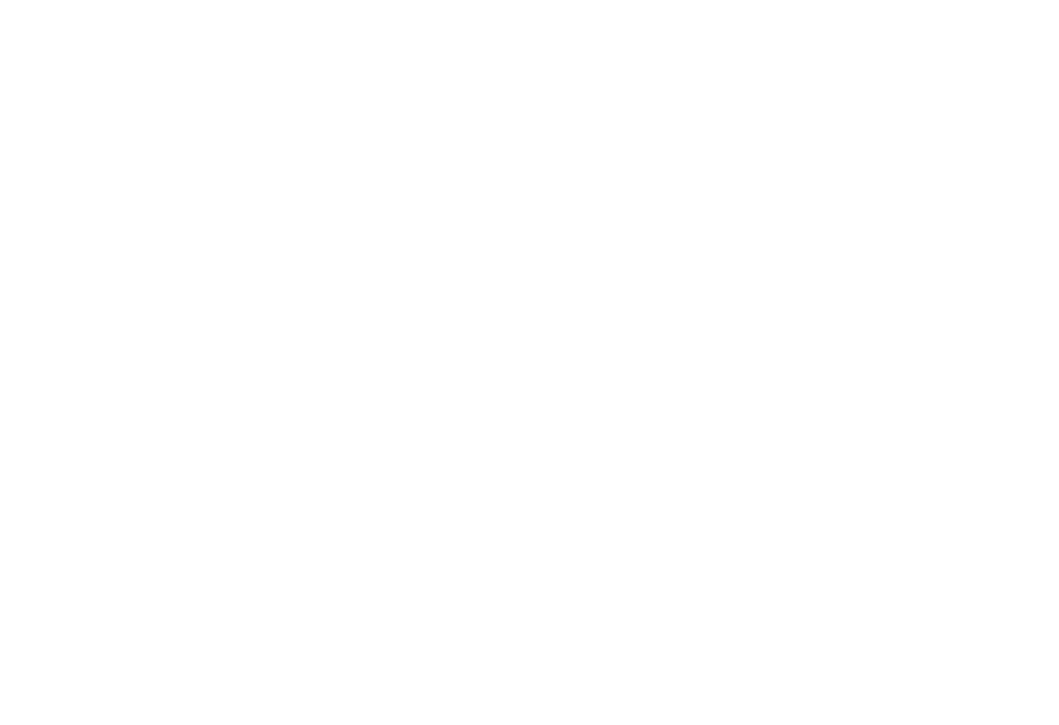 Beyond the Data LLC