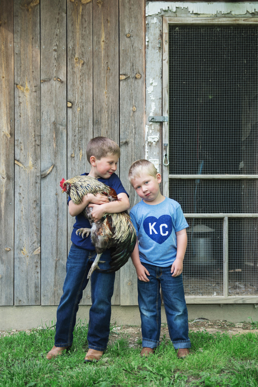 Rex & Jed (and Sparkles, the Rooster)