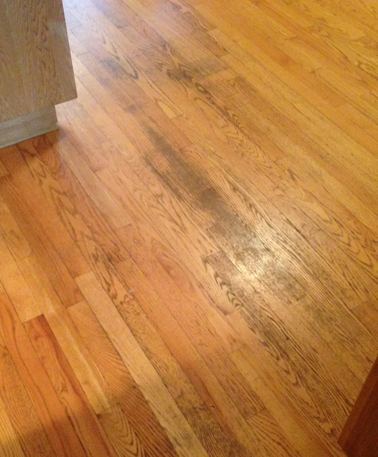 Solutions To Your Floor Problems Volume 1 Plus Hardwood Flooring