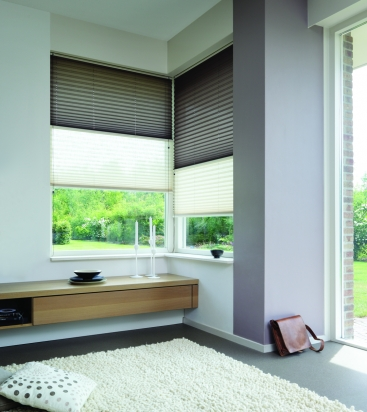 Luxaflex pleated blinds.jpg