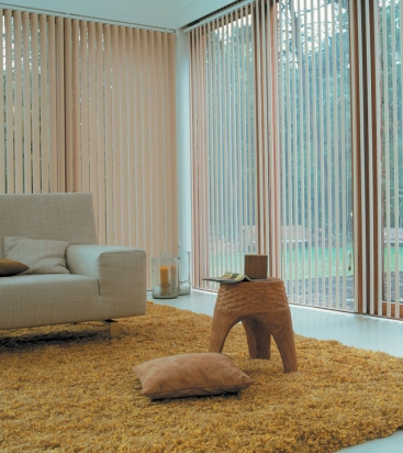 vertical blinds3.jpg